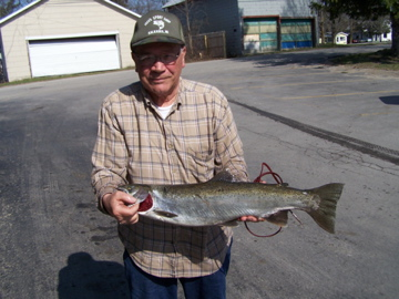 "Taking 4th Place in the Steelhead category is Dick Kimball with nice 7lb. 15oz 29"" hen."
